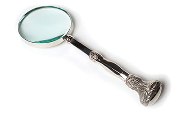feast_magnifying_glass
