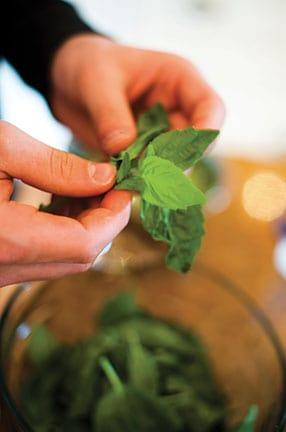 veggie-herbs