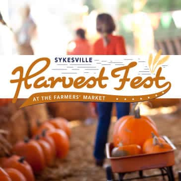 Harvest-Fest-square-10_b441b985-5056-b3a8-4933be317455fde4