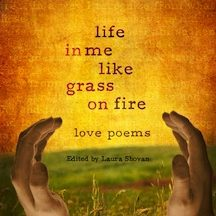 book_cover_poetry___life_in_me_like_grass_on_fire_by_bryceellicott-d4vm925