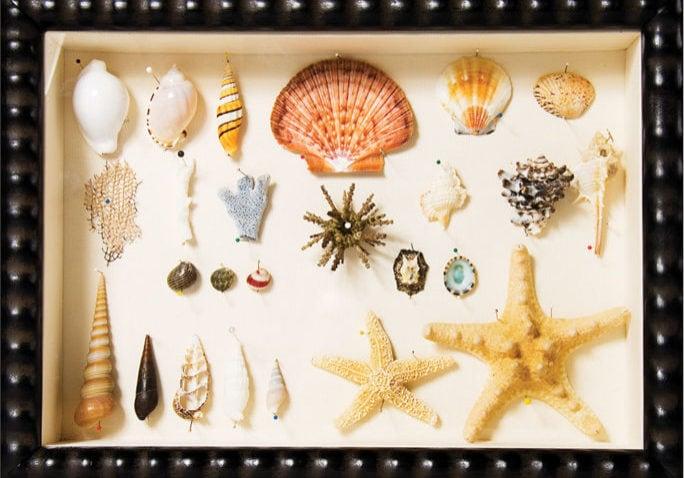 framed-mementos